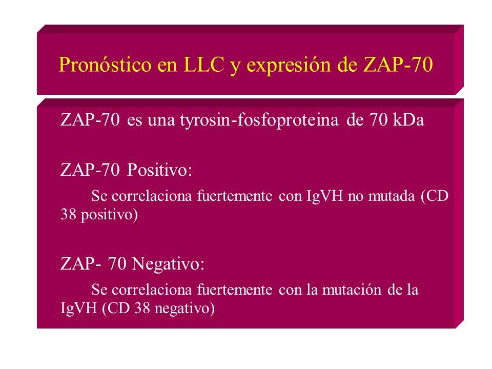 Pronóstico en LLC y expresión de ZAP-70 ZAP-70 es una tyrosin-fosfoproteina de 70 kDa ZAP-70 Positivo: Se correlaciona fuertemente con IgVH no mutada (CD 38 positivo) ZAP- 70 Negativo: Se correlaciona fuertemente con la mutación de la IgVH (CD 38 negativo)