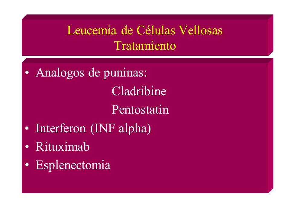 Leucemia de Células Vellosas Tratamiento Analogos de puninas: Cladribine Pentostatin Interferon (INF alpha) Rituximab Esplenectomia