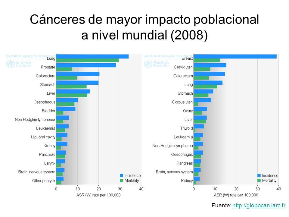 Cánceres de mayor impacto poblacional a nivel mundial (2008) Fuente: http://globocan.iarc.frhttp://globocan.iarc.fr