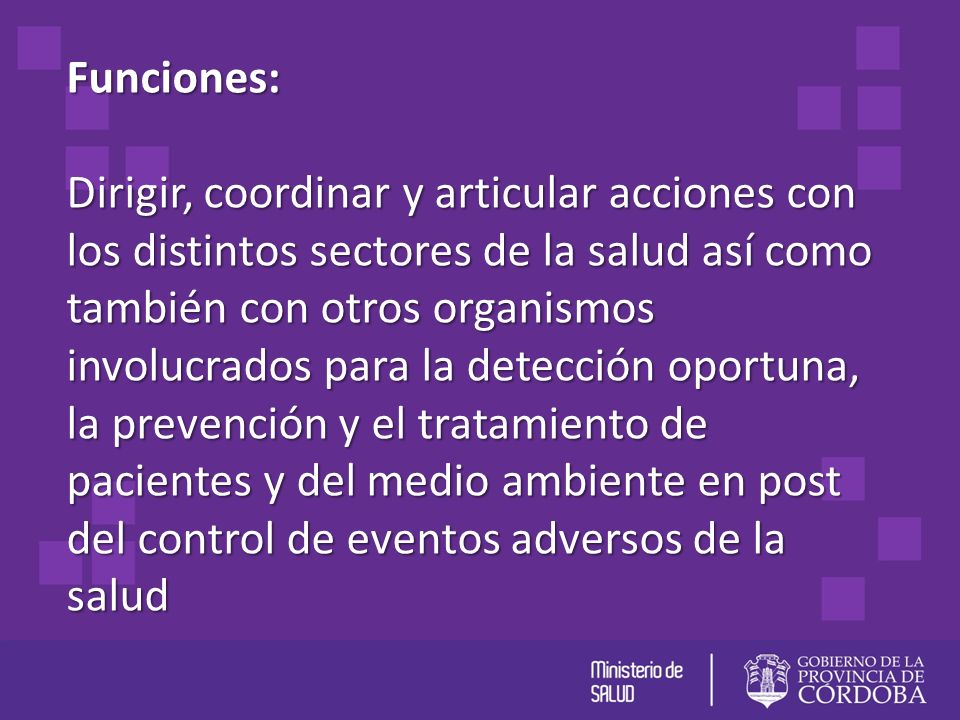 Funciones: Dirigir, coordinar y articular acciones con los distintos sectores de la salud así como también con otros organismos involucrados para la d