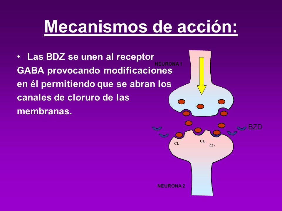 Mecanismos de acción: Las BDZ se unen al receptor GABA provocando modificaciones en él permitiendo que se abran los canales de cloruro de las membrana