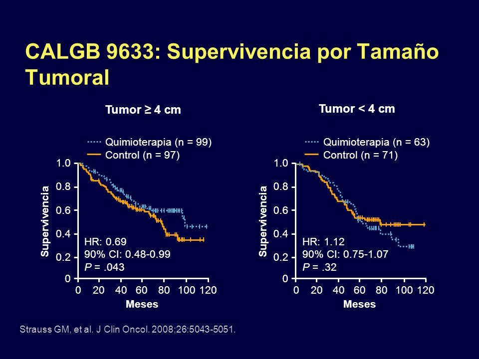 CALGB 9633: Supervivencia por Tamaño Tumoral Tumor 4 cm Tumor < 4 cm Strauss GM, et al. J Clin Oncol. 2008;26:5043-5051. Meses Supervivencia 1.0 0.8 0