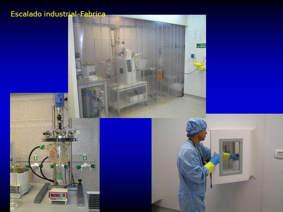 Escalado industrial-Fabrica