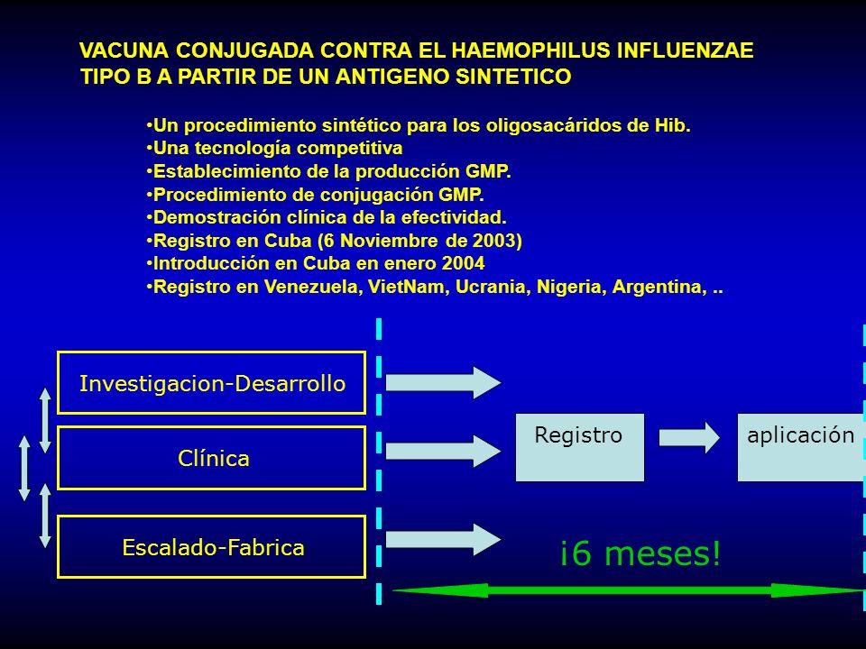 Un procedimiento sintético para los oligosacáridos de Hib.