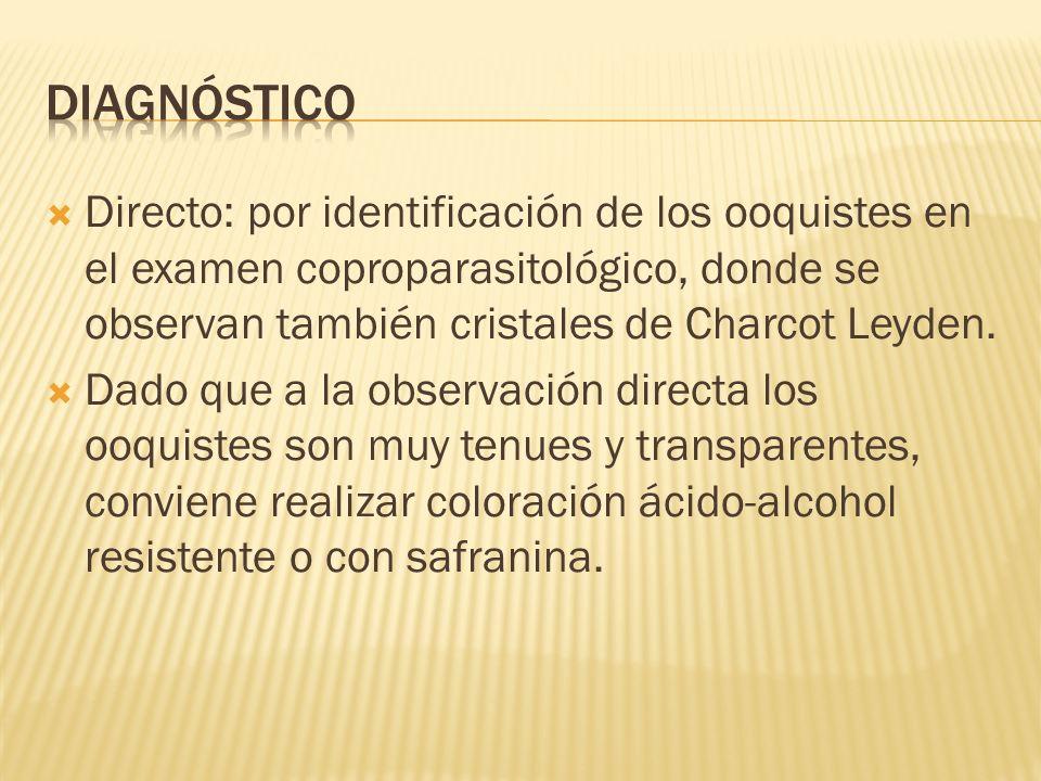 Directo: por identificación de los ooquistes en el examen coproparasitológico, donde se observan también cristales de Charcot Leyden. Dado que a la ob