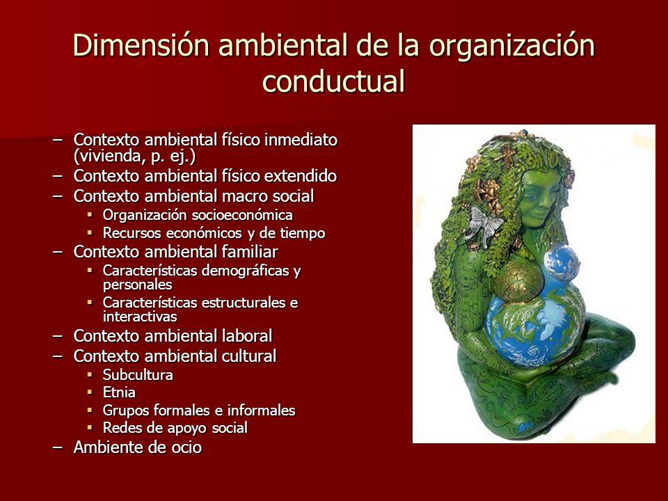 Dimensión ambiental de la organización conductual –Contexto ambiental físico inmediato (vivienda, p. ej.) –Contexto ambiental físico extendido –Contex