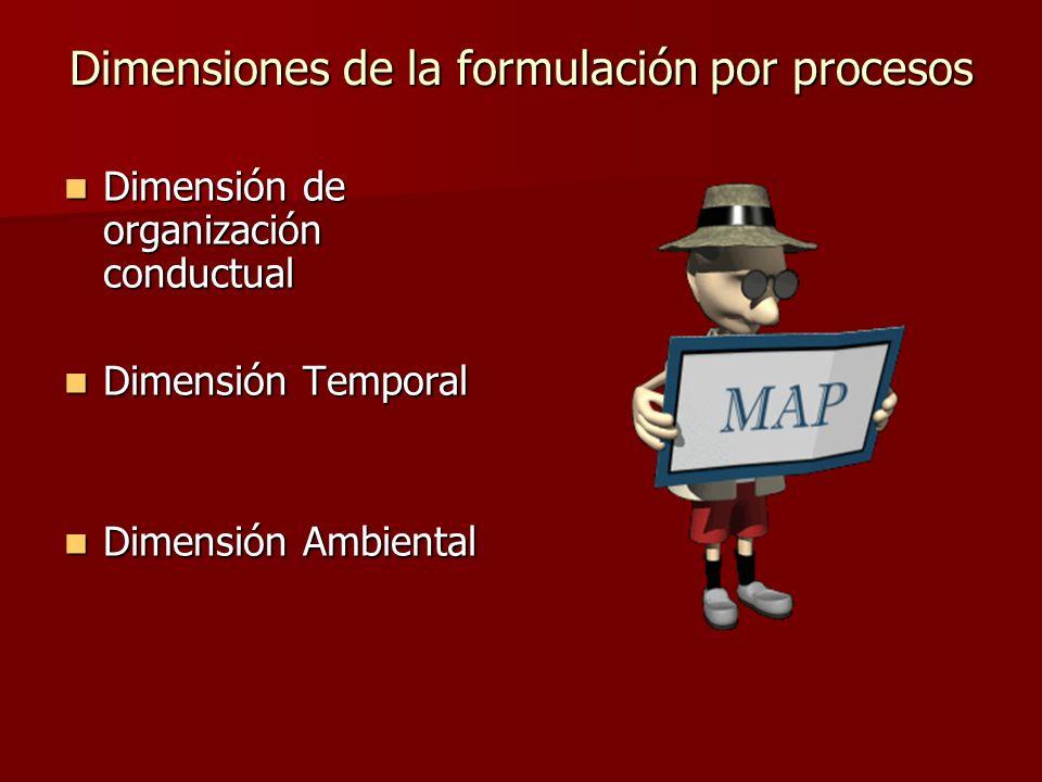 Dimensiones de la formulación por procesos Dimensión de organización conductual Dimensión de organización conductual Dimensión Temporal Dimensión Temp