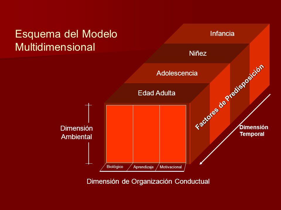 Edad Adulta Adolescencia Niñez Infancia Factores de Predisposición Dimensión Temporal Dimensión Ambiental Biológico AprendizajeMotivacional Dimensión de Organización Conductual Esquema del Modelo Multidimensional