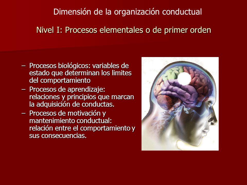 Nivel I: Procesos elementales o de primer orden –Procesos biológicos: variables de estado que determinan los limites del comportamiento –Procesos de a
