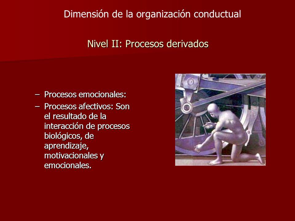 Nivel II: Procesos derivados –Procesos emocionales: –Procesos afectivos: Son el resultado de la interacción de procesos biológicos, de aprendizaje, mo
