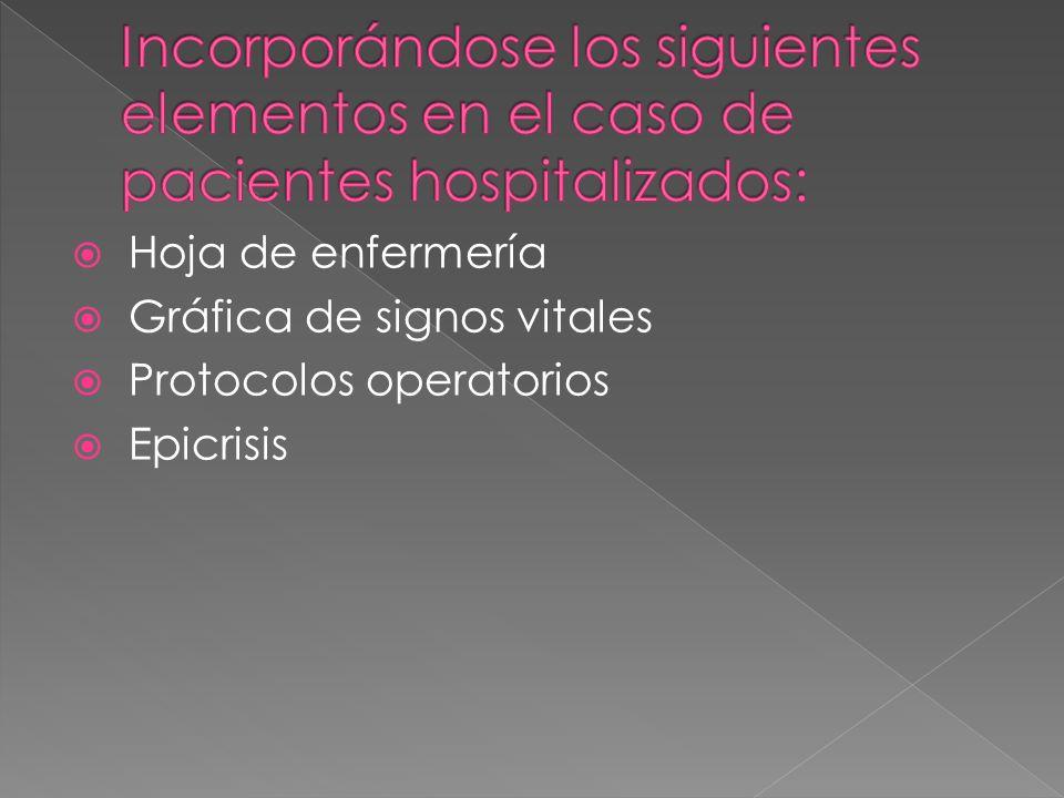 Hoja de enfermería Gráfica de signos vitales Protocolos operatorios Epicrisis