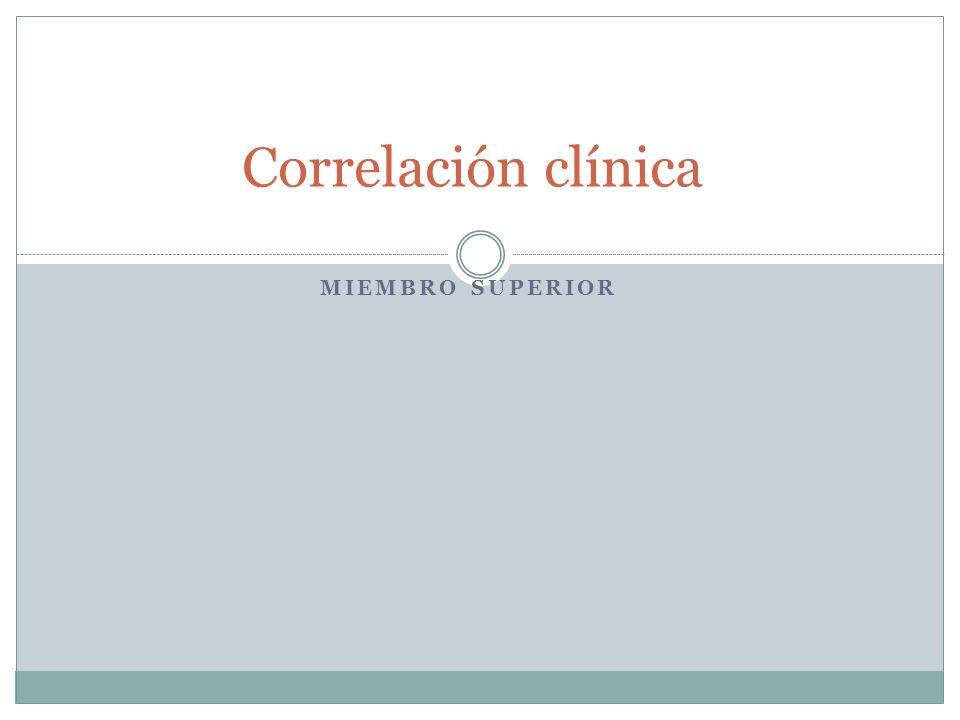 MIEMBRO SUPERIOR Correlación clínica