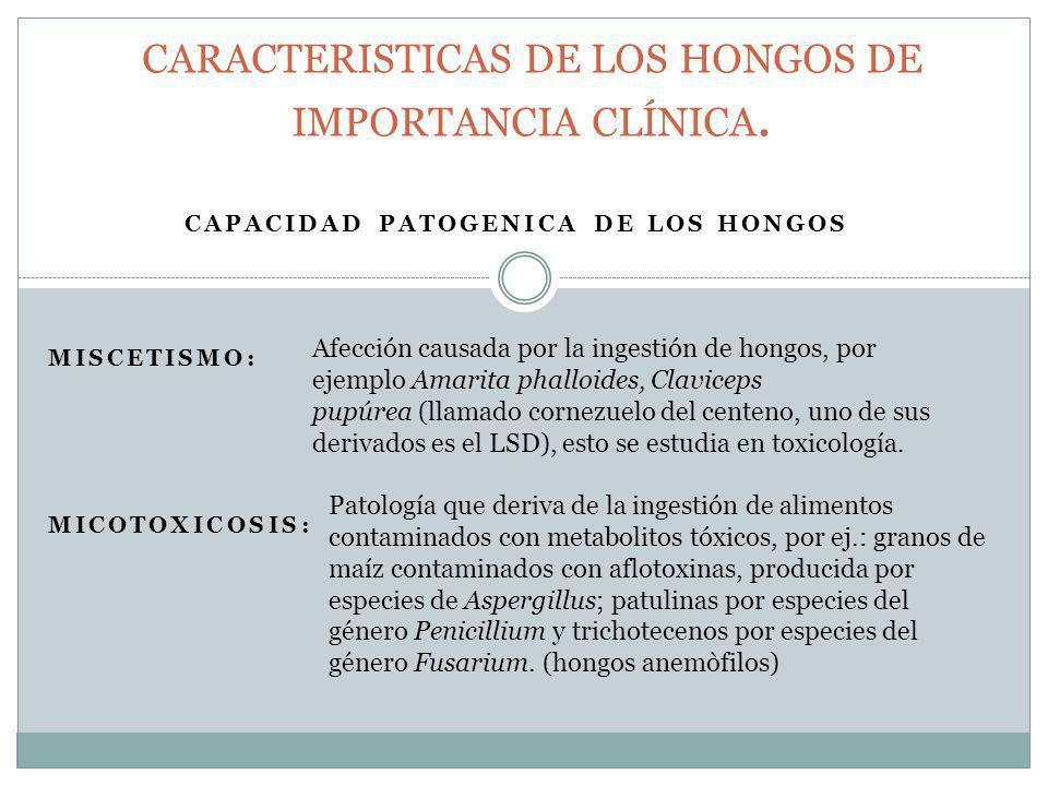 CAPACIDAD PATOGENICA DE LOS HONGOS MISCETISMO: MICOTOXICOSIS: CARACTERISTICAS DE LOS HONGOS DE IMPORTANCIA CLÍNICA. Afección causada por la ingestión