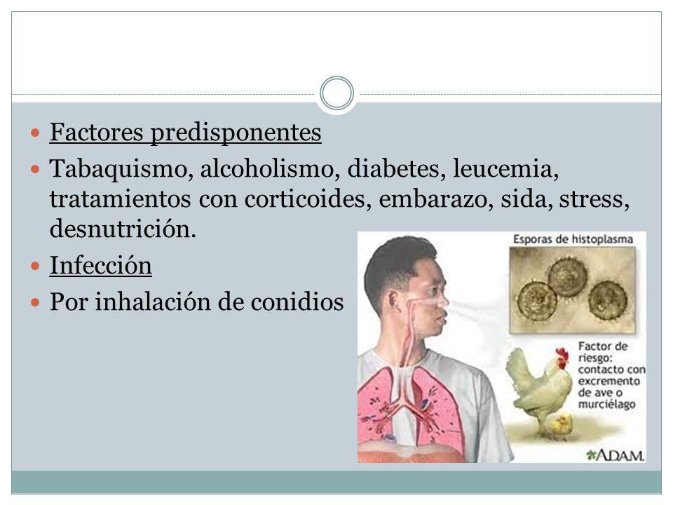 Factores predisponentes Tabaquismo, alcoholismo, diabetes, leucemia, tratamientos con corticoides, embarazo, sida, stress, desnutrición. Infección Por