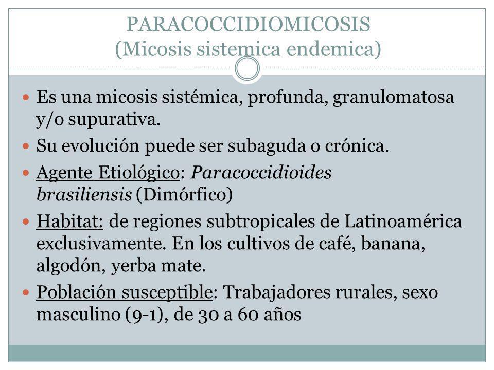 PARACOCCIDIOMICOSIS (Micosis sistemica endemica) Es una micosis sistémica, profunda, granulomatosa y/o supurativa. Su evolución puede ser subaguda o c