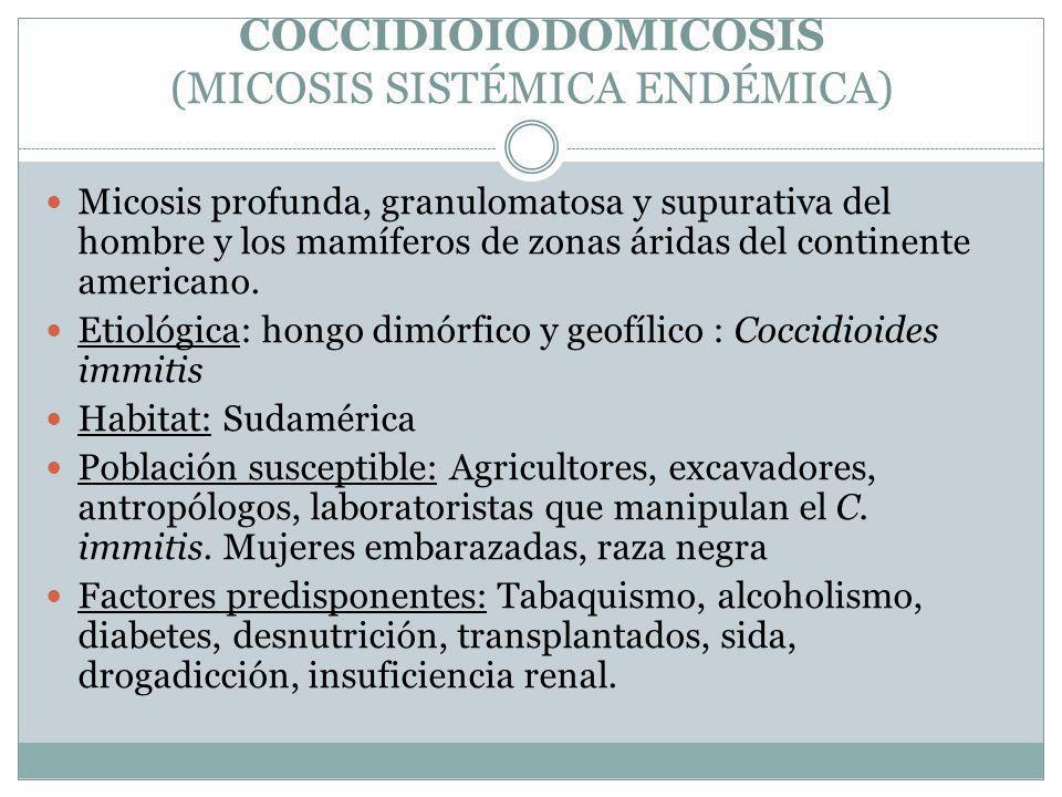 COCCIDIOIODOMICOSIS (MICOSIS SISTÉMICA ENDÉMICA) Micosis profunda, granulomatosa y supurativa del hombre y los mamíferos de zonas áridas del continent