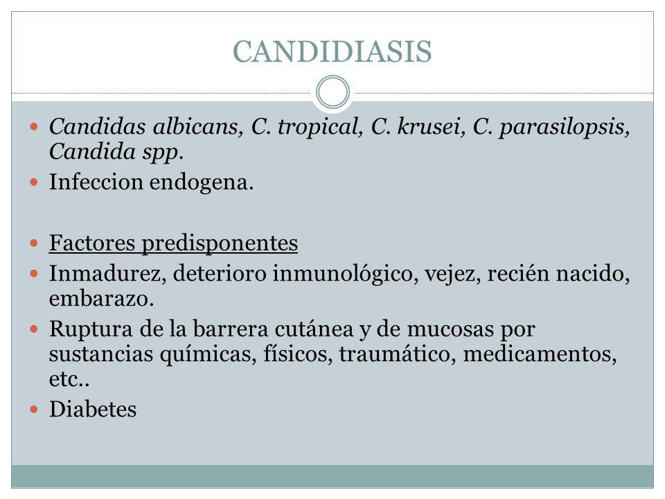 CANDIDIASIS Candidas albicans, C. tropical, C. krusei, C. parasilopsis, Candida spp. Infeccion endogena. Factores predisponentes Inmadurez, deterioro