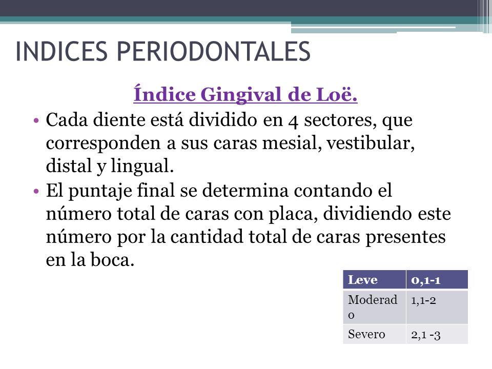 INDICES PERIODONTALES Índice Gingival de Loë. Cada diente está dividido en 4 sectores, que corresponden a sus caras mesial, vestibular, distal y lingu