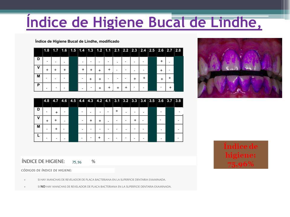 Índice de Higiene Bucal de Lindhe, modificado. Índice de higiene: 75,96%