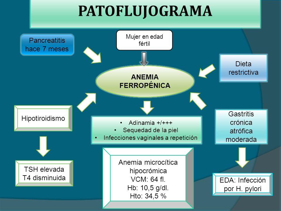 PATOFLUJOGRAMA Mujer en edad fértil ANEMIA FERROPÉNICA Adinamia +/+++ Sequedad de la piel Infecciones vaginales a repetición Gastritis crónica atrófica moderada Pancreatitis hace 7 meses Hipotiroidismo Anemia microcítica hipocrómica VCM: 64 fl.
