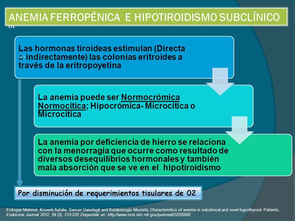 ANEMIA FERROPÉNICA E HIPOTIROIDISMO SUBCLÍNICO (1) Las hormonas tiroideas estimulan (Directa o indirectamente) las colonias eritroides a través de la eritropoyetina La anemia puede ser Normocrómica Normocítica; Hipocrómica- Microcítica o Microcítica La anemia por deficiencia de hierro se relaciona con la menorragia que ocurre como resultado de diversos desequilibrios hormonales y también mala absorción que se ve en el hipotiroidismo Por disminución de requerimientos tisulares de 02 Erdogan Mehmet, Kosenli Aybike, Sencer Ganıdagli and Kulaksizoglu Mustafa, Characteristics of anemia in subclinical and overt hypothyroid Patients, Endocrine Journal 2012, 59 (3), 213-220 Disponible en: http://www.ncbi.nlm.nih.gov/pubmed/22200582