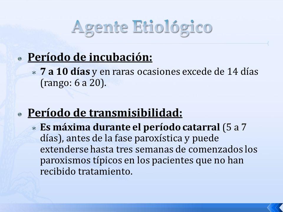 Período de incubación: 7 a 10 días y en raras ocasiones excede de 14 días (rango: 6 a 20). Período de transmisibilidad: Es máxima durante el período c
