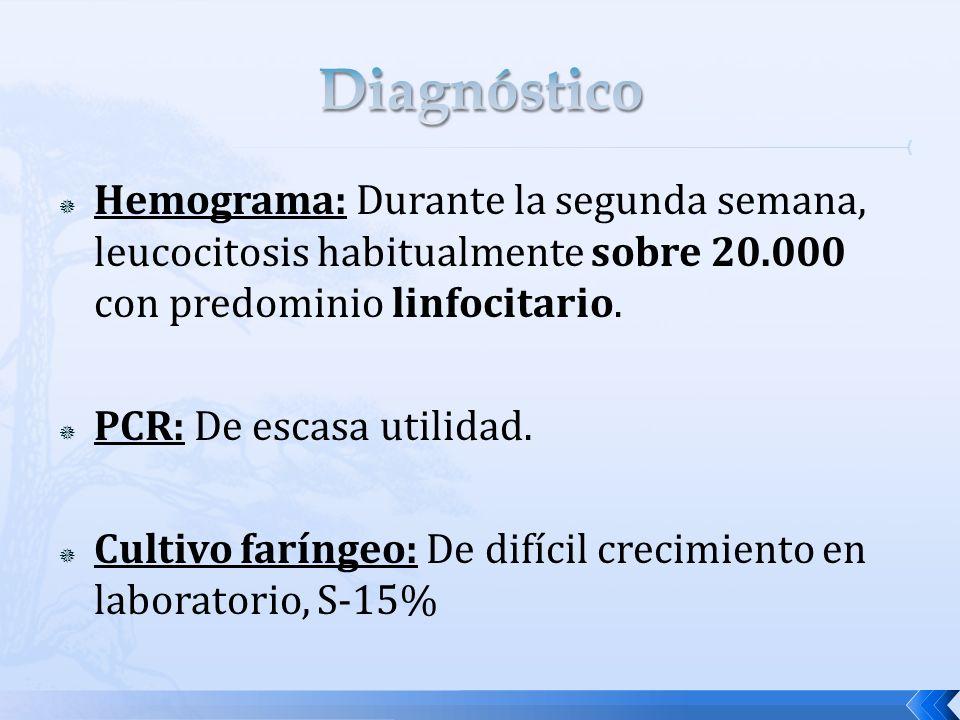 Hemograma: Durante la segunda semana, leucocitosis habitualmente sobre 20.000 con predominio linfocitario. PCR: De escasa utilidad. Cultivo faríngeo: