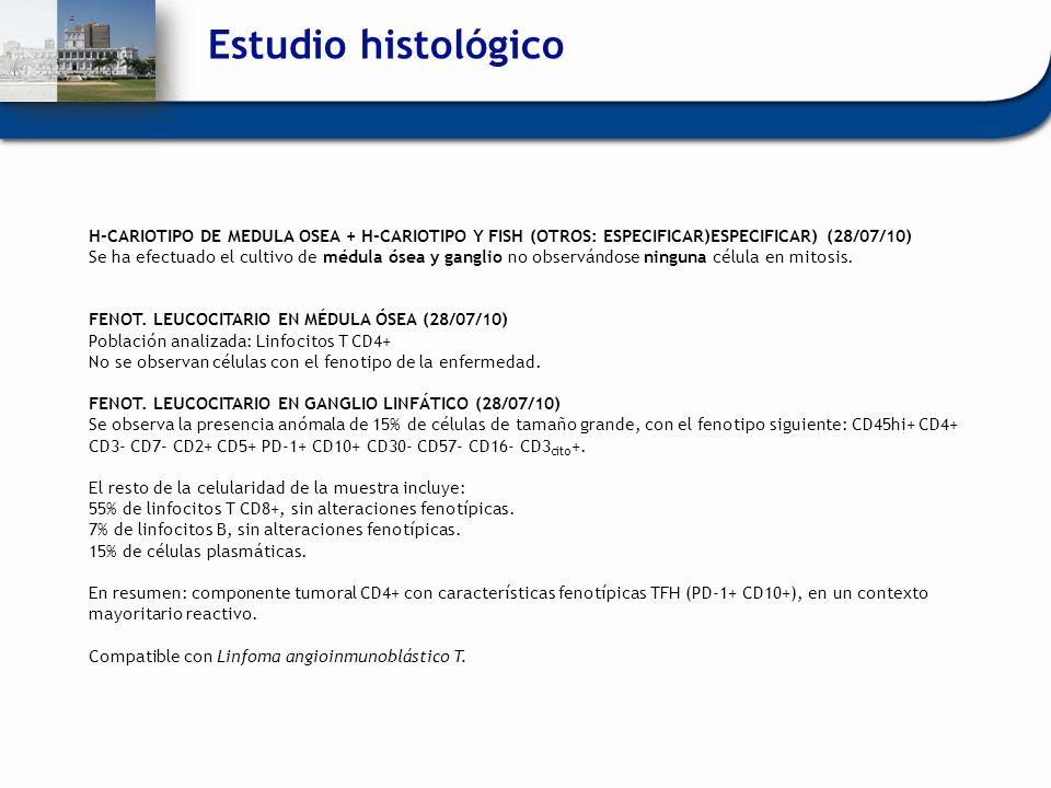 Estudio histológico H-CARIOTIPO DE MEDULA OSEA + H-CARIOTIPO Y FISH (OTROS: ESPECIFICAR)ESPECIFICAR) (28/07/10) Se ha efectuado el cultivo de médula ó