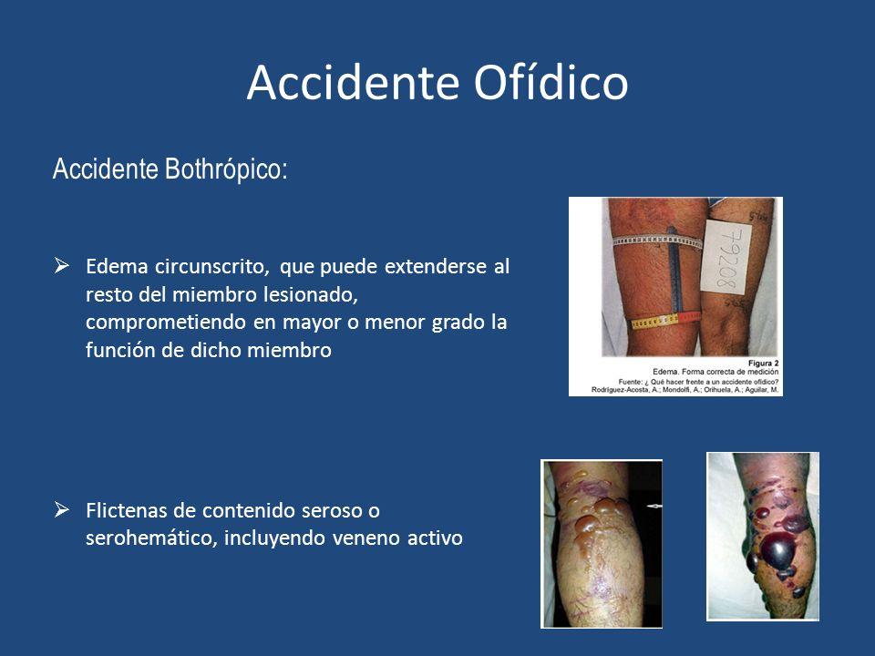 Accidente Ofídico Accidente Bothrópico: Edema circunscrito, que puede extenderse al resto del miembro lesionado, comprometiendo en mayor o menor grado