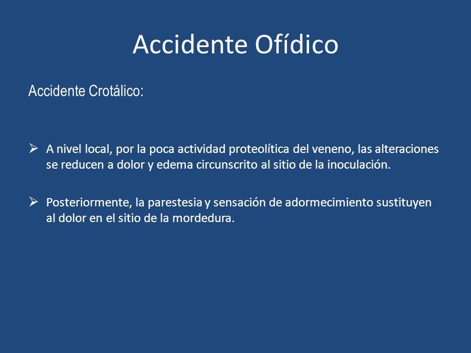 Accidente Ofídico Accidente Crotálico: A nivel local, por la poca actividad proteolítica del veneno, las alteraciones se reducen a dolor y edema circu
