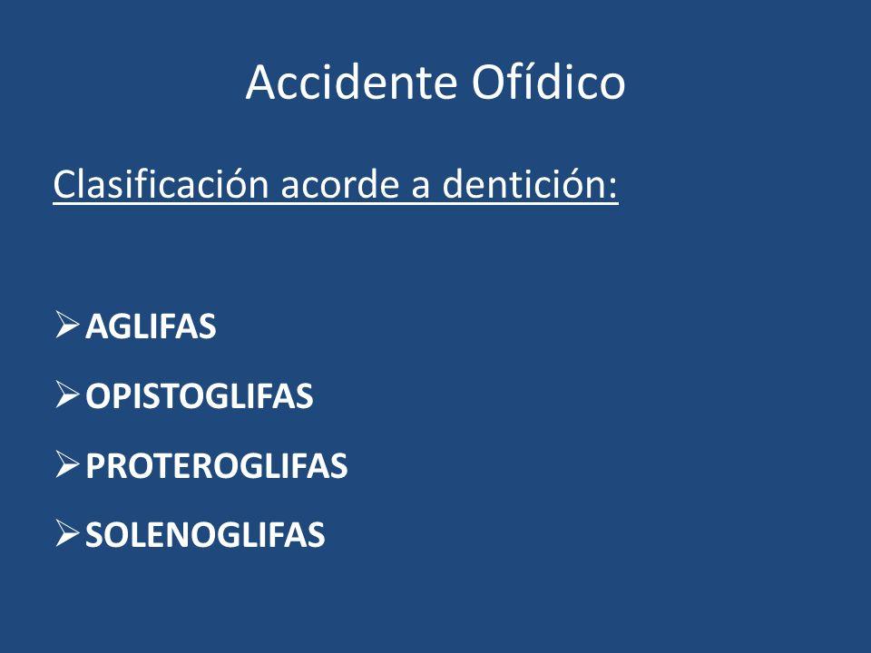 Accidente Ofídico Clasificación acorde a dentición: AGLIFAS OPISTOGLIFAS PROTEROGLIFAS SOLENOGLIFAS