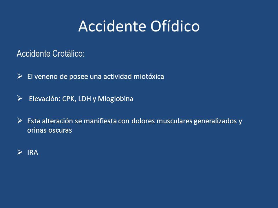 Accidente Ofídico Accidente Crotálico: El veneno de posee una actividad miotóxica Elevación: CPK, LDH y Mioglobina Esta alteración se manifiesta con d