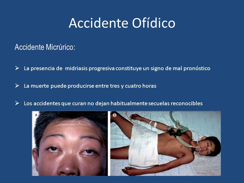 Accidente Ofídico Accidente Micrúrico: La presencia de midriasis progresiva constituye un signo de mal pronóstico La muerte puede producirse entre tre