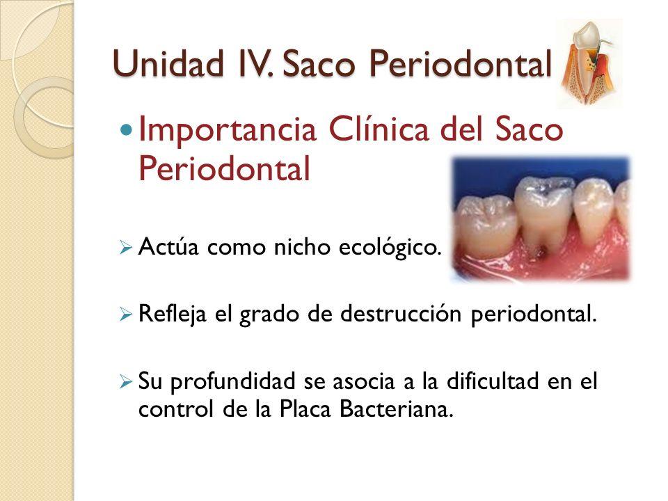 Importancia Clínica del Saco Periodontal Actúa como nicho ecológico. Refleja el grado de destrucción periodontal. Su profundidad se asocia a la dificu