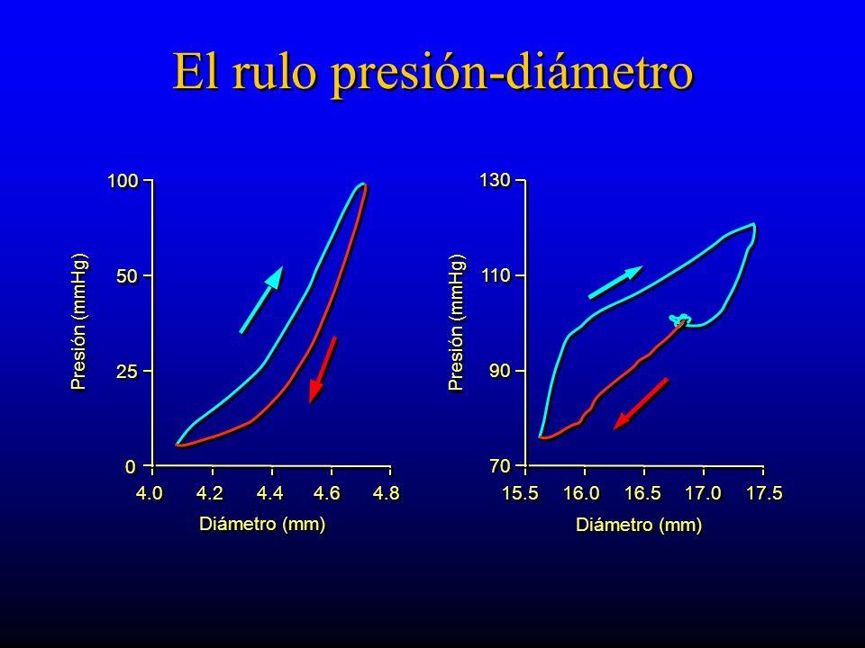 Diámetro (mm) 4.0 4.2 4.4 4.6 4.8 0 0 25 50 100 Presión (mmHg) 15.5 16.0 16.5 17.0 17.5 70 90 110 130 Diámetro (mm) Presión (mmHg) El rulo presión-diámetro