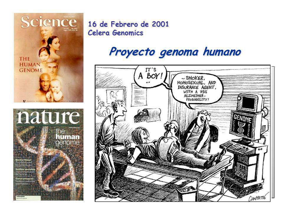 Beneficios médicos tras el conocimiento de la estructura de cada gen humano 1.