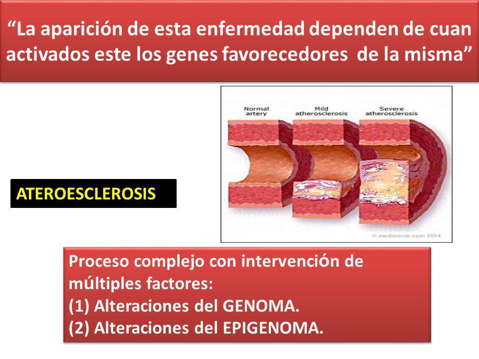 ATEROESCLEROSIS Proceso complejo con intervenci ó n de m ú ltiples factores: (1) Alteraciones del GENOMA.