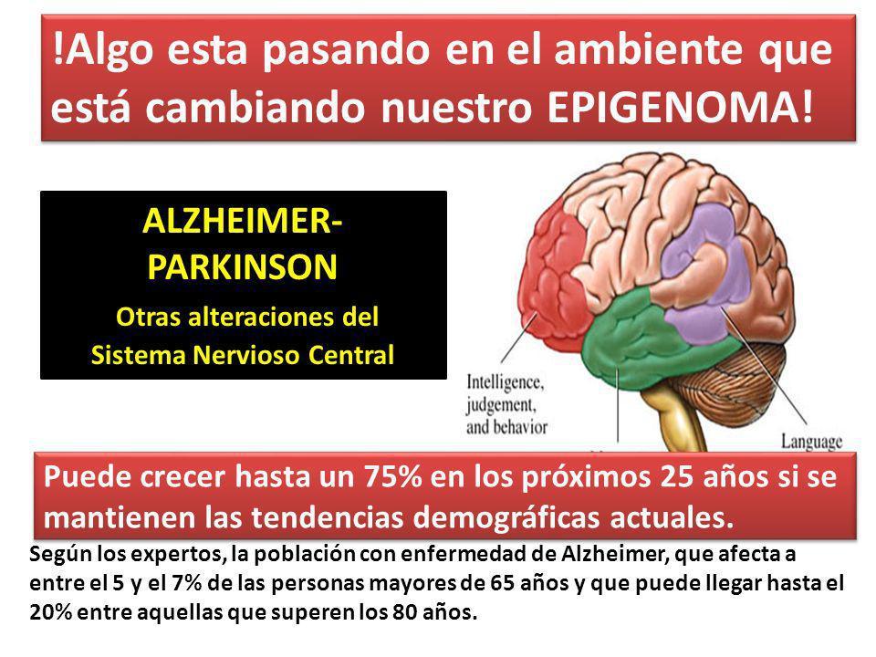 ALZHEIMER- PARKINSON Otras alteraciones del Sistema Nervioso Central Según los expertos, la población con enfermedad de Alzheimer, que afecta a entre el 5 y el 7% de las personas mayores de 65 años y que puede llegar hasta el 20% entre aquellas que superen los 80 años.