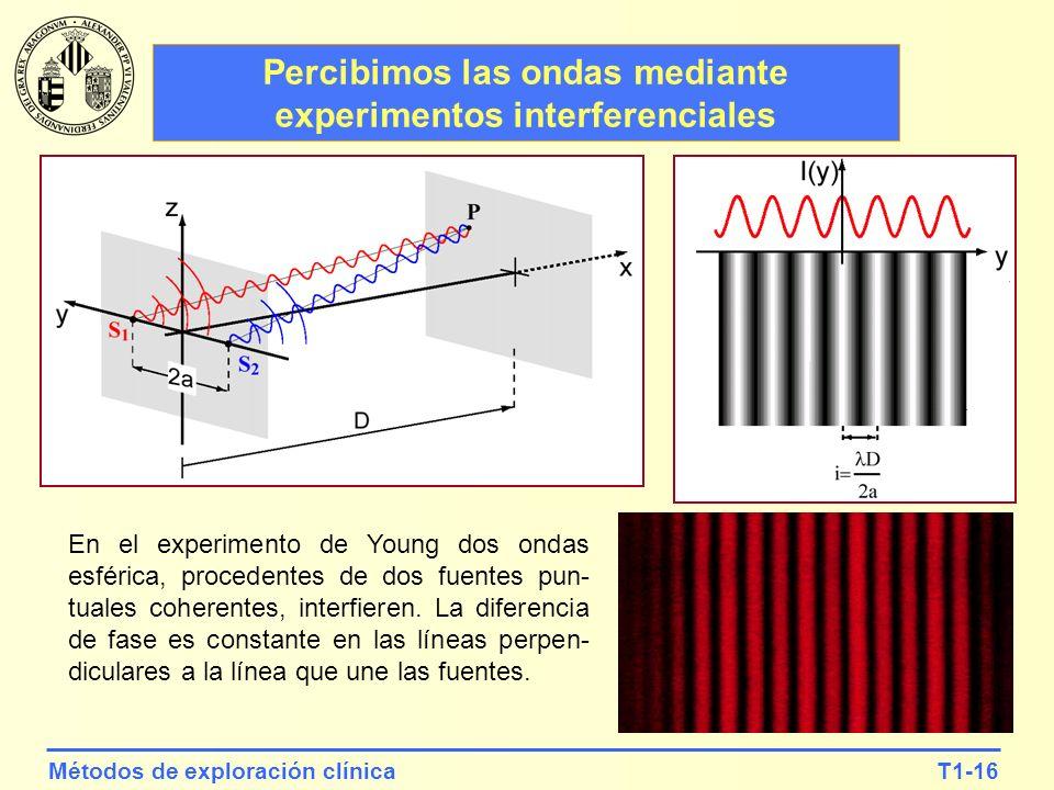 T1-16Métodos de exploración clínica Percibimos las ondas mediante experimentos interferenciales En el experimento de Young dos ondas esférica, procede