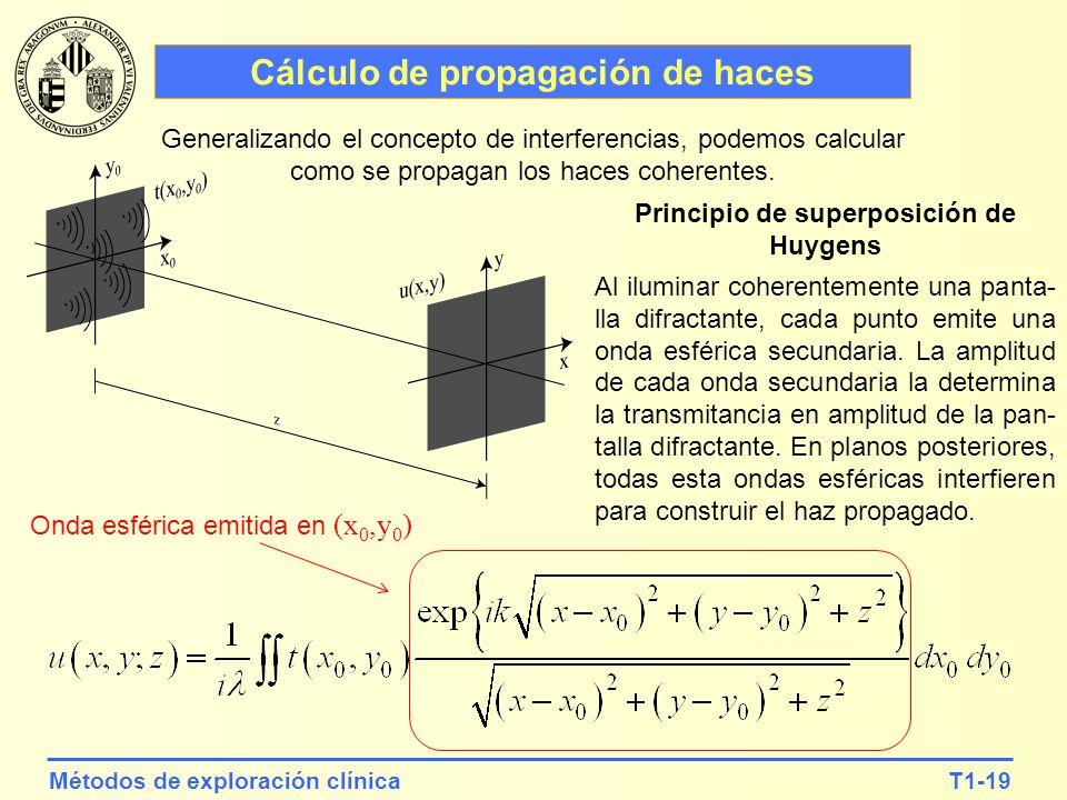 T1-19Métodos de exploración clínica Cálculo de propagación de haces Generalizando el concepto de interferencias, podemos calcular como se propagan los