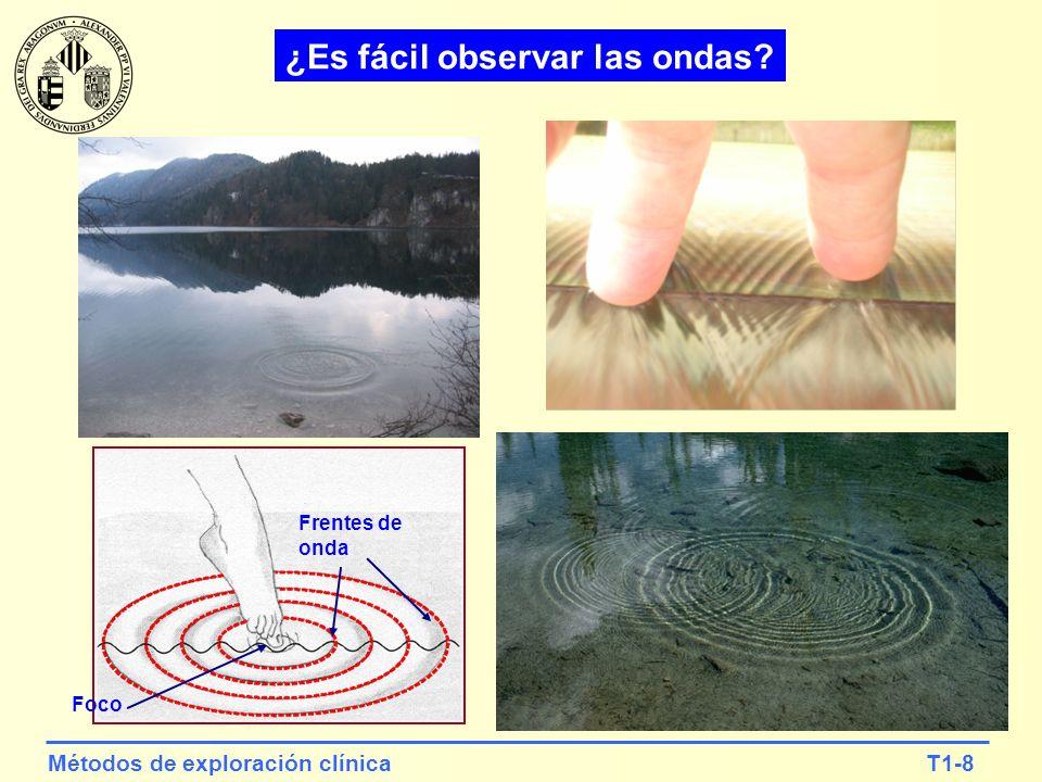 T1-8Métodos de exploración clínica ¿Es fácil observar las ondas? Frentes de onda Foco
