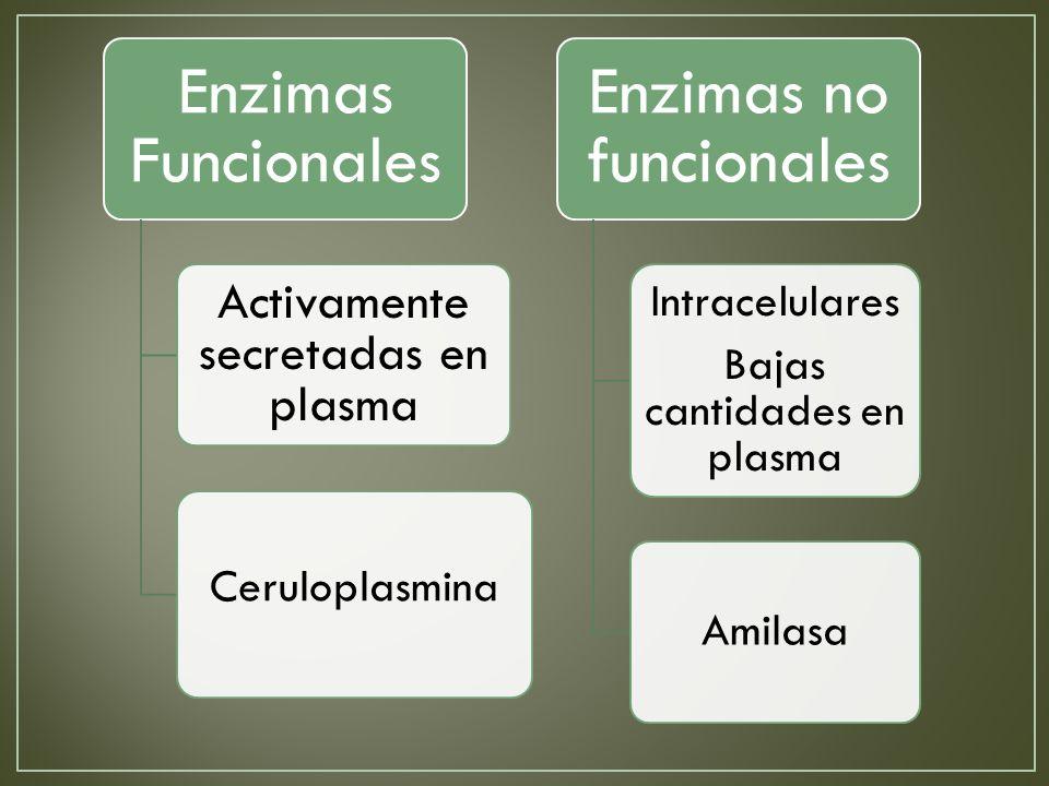 Enzimas Funcionales Activamente secretadas en plasma Ceruloplasmina Enzimas no funcionales Intracelulares Bajas cantidades en plasma Amilasa