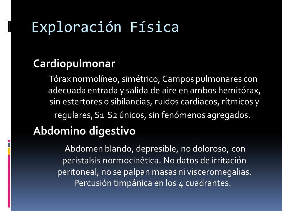 Exploración Física Cardiopulmonar Tórax normolíneo, simétrico, Campos pulmonares con adecuada entrada y salida de aire en ambos hemitórax, sin estertores o sibilancias, ruidos cardiacos, rítmicos y regulares, S1 S2 únicos, sin fenómenos agregados.