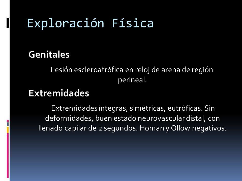 Exploración Física Genitales Lesión escleroatrófica en reloj de arena de región perineal.