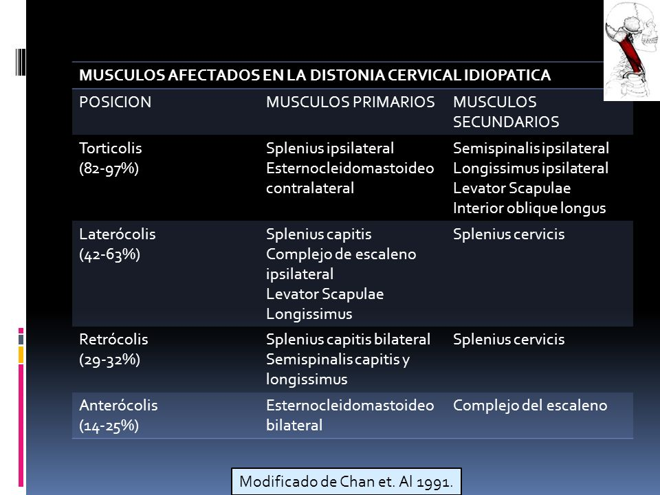 MUSCULOS AFECTADOS EN LA DISTONIA CERVICAL IDIOPATICA POSICIONMUSCULOS PRIMARIOSMUSCULOS SECUNDARIOS Torticolis (82-97%) Splenius ipsilateral Esternocleidomastoideo contralateral Semispinalis ipsilateral Longissimus ipsilateral Levator Scapulae Interior oblique longus Laterócolis (42-63%) Splenius capitis Complejo de escaleno ipsilateral Levator Scapulae Longissimus Splenius cervicis Retrócolis (29-32%) Splenius capitis bilateral Semispinalis capitis y longissimus Splenius cervicis Anterócolis (14-25%) Esternocleidomastoideo bilateral Complejo del escaleno Modificado de Chan et.