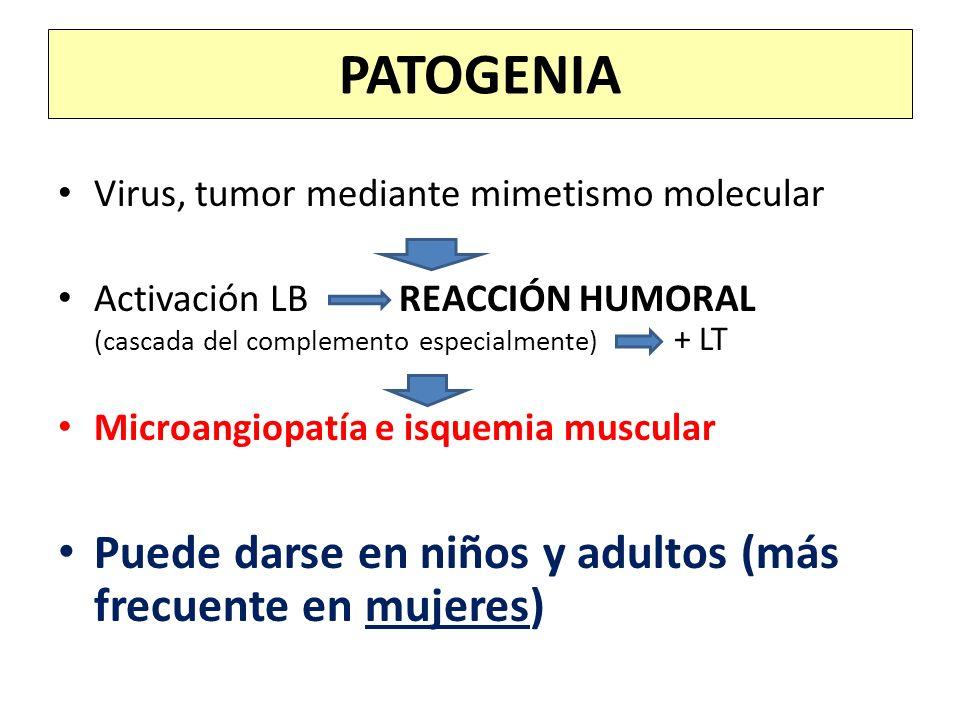 Virus, tumor mediante mimetismo molecular Activación LB REACCIÓN HUMORAL (cascada del complemento especialmente) + LT Microangiopatía e isquemia muscu