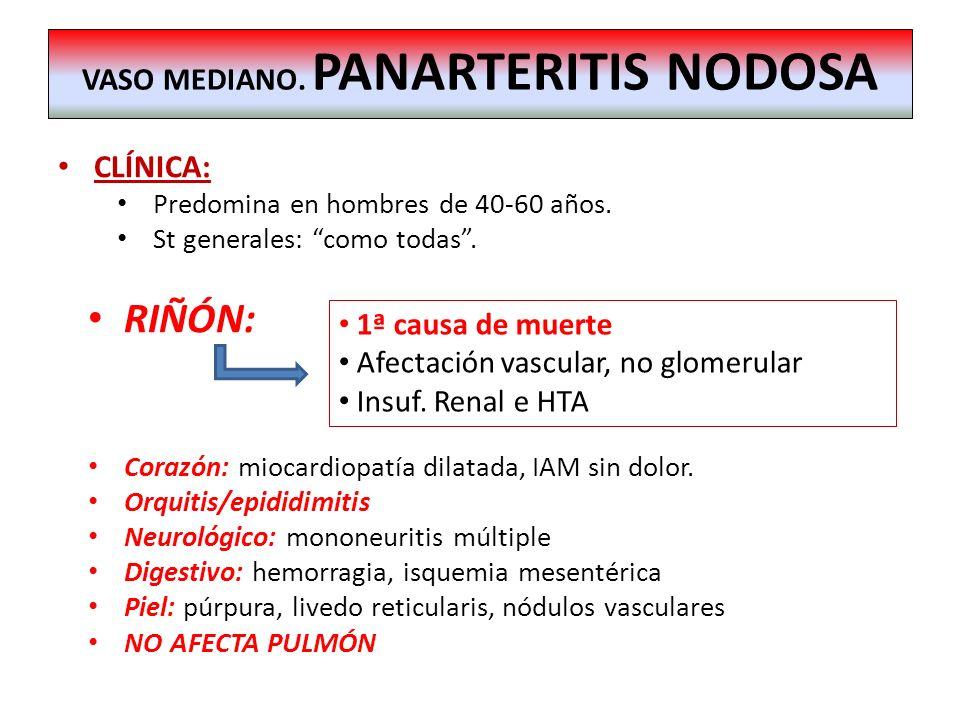 CLÍNICA: Predomina en hombres de 40-60 años. St generales: como todas. RIÑÓN: Corazón: miocardiopatía dilatada, IAM sin dolor. Orquitis/epididimitis N
