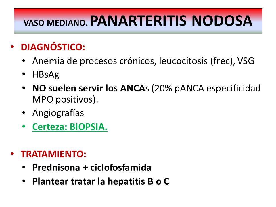 DIAGNÓSTICO: Anemia de procesos crónicos, leucocitosis (frec), VSG HBsAg NO suelen servir los ANCAs (20% pANCA especificidad MPO positivos). Angiograf