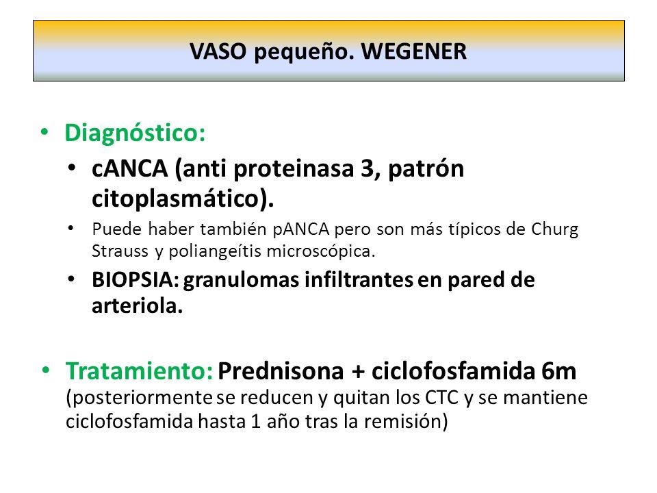 Diagnóstico: cANCA (anti proteinasa 3, patrón citoplasmático). Puede haber también pANCA pero son más típicos de Churg Strauss y poliangeítis microscó