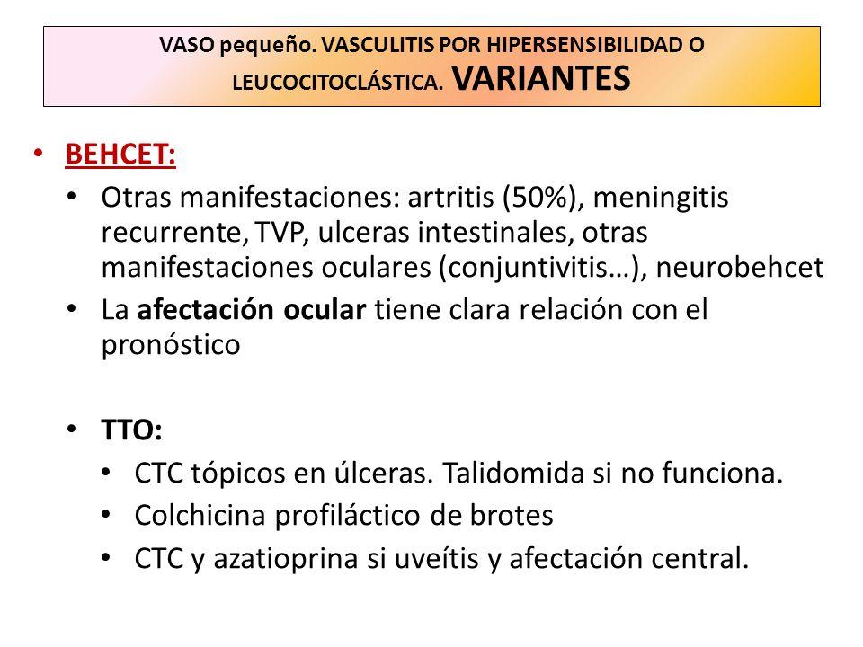 VASO pequeño. VASCULITIS POR HIPERSENSIBILIDAD O LEUCOCITOCLÁSTICA. VARIANTES BEHCET: Otras manifestaciones: artritis (50%), meningitis recurrente, TV